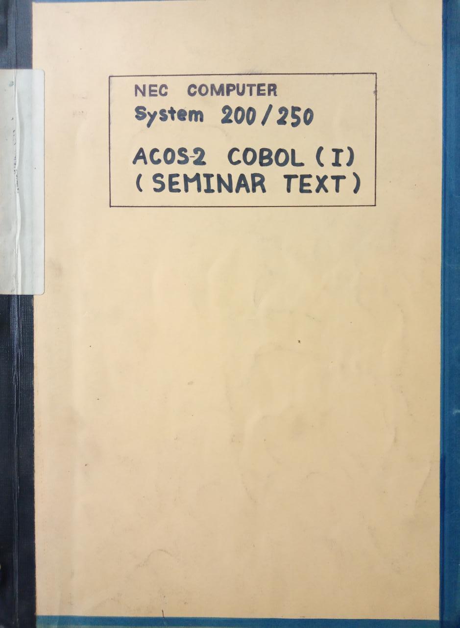 NEC COMPUTER SYSTEM 200/250